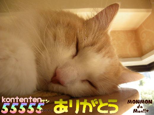 so-net623135.jpg