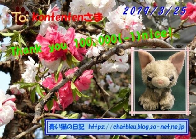 so-net6233911.jpg